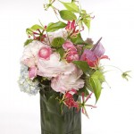 4046_012309_flowers_xl