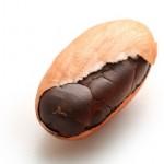 boabă de cacao