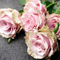 Felicitare Flori - 1093