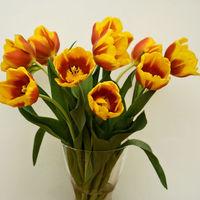 Felicitare Flori - 20