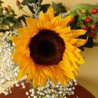 Felicitare Flori - 145