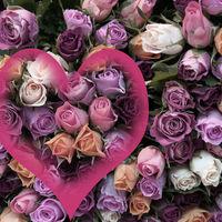 Felicitare Sf. Valentin - 1591