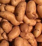 Puterea cartofilor!