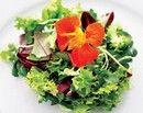 Dieta pentru accelerarea metabolismului