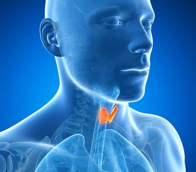 ce este glanda tiroida