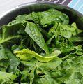 Soluția verde pentru slăbit: Spanacul taie pofta de dulciuri şi mâncare nesănătoasă