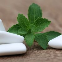 Ingrediente periculoase din guma de mestecat: citește eticheta!