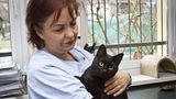 Motanul asistent: O pisică veghează animalele bolnave - FOTO