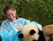 VIDEO. Cel mai bun job din lume: Te joci cu urşii Panda!