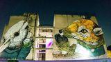 Graffiti în America Latină: Poveştile adunate de pe ziduri