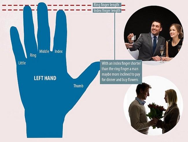 Finger length man paying graphic.jpg