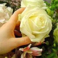 Felicitare Flori - 68