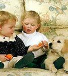 Copilul tau si catelul - ajuta-i sa devina cei mai buni prieteni