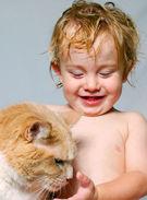 Cum eviti problemele dintre micut si animalul de companie