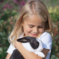 Esti pregatita sa ai un iepure ca animal de casa?