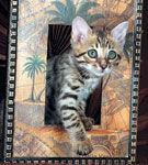 Pisica si omul in Egiptul antic