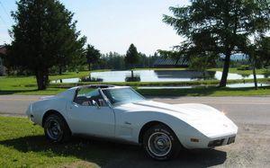 Kimi Raikkonen a cumparat Corvette-ul lui Sharon Stone