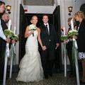 Nunta de vis in familia Sistem