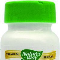 Goldenseal - antibiotic natural