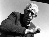 Scriitorul american Jerome David Salinger a murit