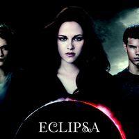 Ziua Eclipsa in librarii