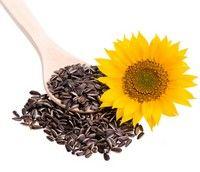 Seminţele de floarea-soarelui, un excelent energizant