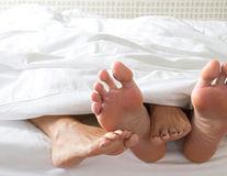 Sexul de dimineaţă este cel mai bun