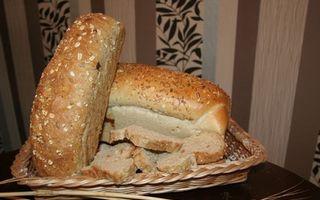 Jupanita coace paine rumena