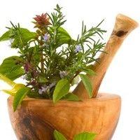 4 plante cu proprietăţi antibiotice