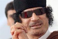 Lux nesimţit al fiului lui Gaddafi