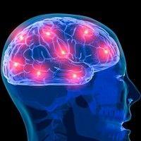6 mituri despre creier