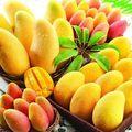 Fructul care combate grăsimea din corp