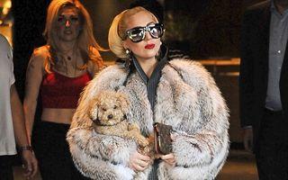 Apariţie şoc: Lady Gaga în Bulgaria, îmbrăcată cu o haină de blană!