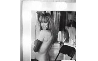 Celine Dion, pictorial provocator