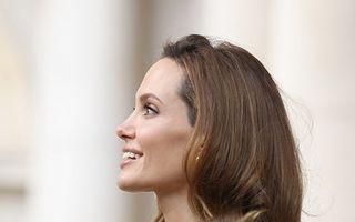 Cum s-a schimbat Angelina Jolie de-a lungul timpului