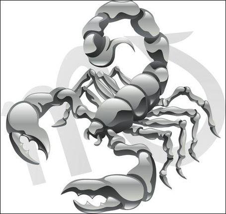 Pozitii sexuale scorpion