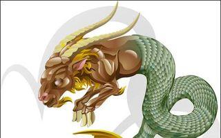 Horoscop: Regula contrastelor care se atrag. Zodia ta opusă şi compatibilitatea