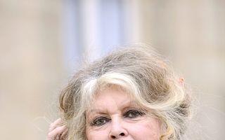 Brigitte Bardot le ia apărarea câinilor