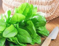 Dr. Oz: 5 alimente care vindecă durerile de cap şi eliberează tensiunea