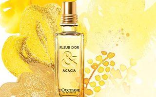 L'Occitane - lansare parfumata a lunii Noiembrie