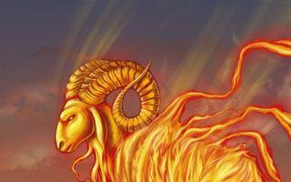 Horoscopul săptămânii 28 octombrie-3 noiembrie. Vezi ce spun astrele!