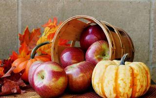 5 alimente de sezon pe care să le foloseşti cu încredere ca să fii sănătoasă