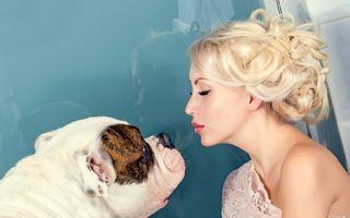 3 soluţii ca să-ţi laşi animalele de companie acasă când pleci în vacanţă