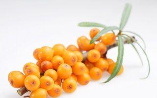 Dr. Oz: 10 alimente la care nu te-ai fi gândit că sunt bogate în vitamina C