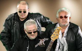 Baniciu, Kappl şi Ţăndărică au înfiinţat formaţia Pasărea Rock şi vor susţine un concert la Sala Palatului în luna martie