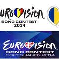 Eurovision 2014: Un membru al juriului a căzut de pe scenă. A fost chemată Salvarea