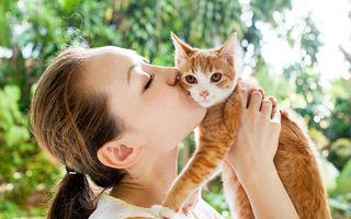 Ce boli poţi să iei de la animalele de companie