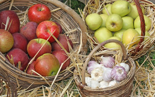 Dr. Oz: 5 alimente pe care să le consumi ca să ai colesterolul mic