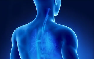 Sănătatea rinichilor: 6 sfaturi care te ajută să-i protejezi