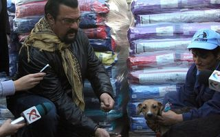 Steven Seagal a mai adoptat doi căţei din România